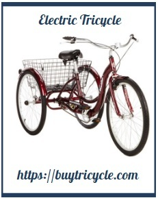 All Aspects About Adult Trike 5