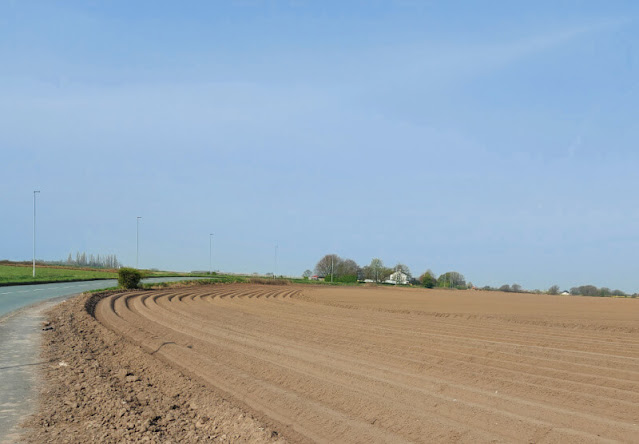 Furrowed lines in a ploughed field that curve to the right along the side of the road