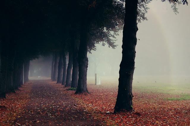 jesień, magia jesieni