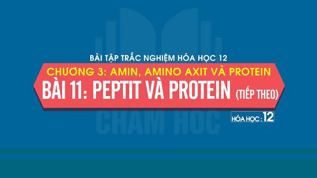 Bài tập trắc nghiệm Hóa 12 Bài 11: Peptit và protein (Tiếp theo)