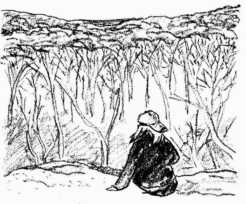 sketch of a girl overlooking winter trees by David Borden