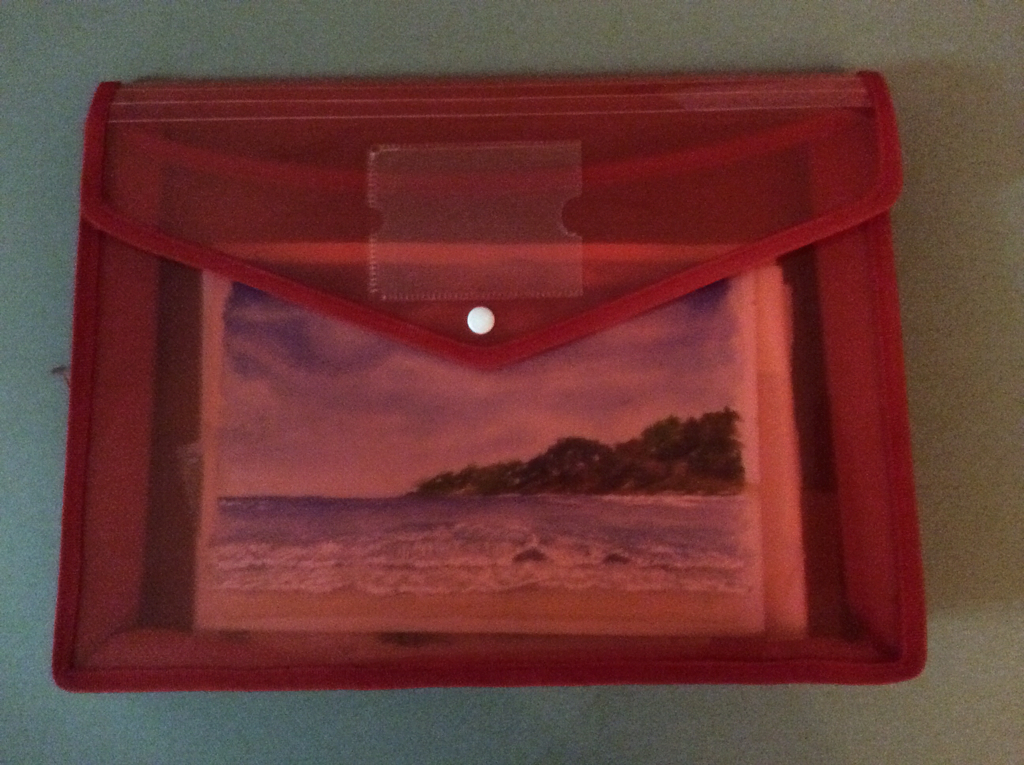 plastic folder with water colour paintings stored in it.