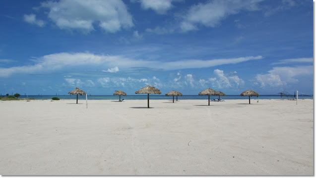 Beach Umbrellas made of palms litter large empty beach.