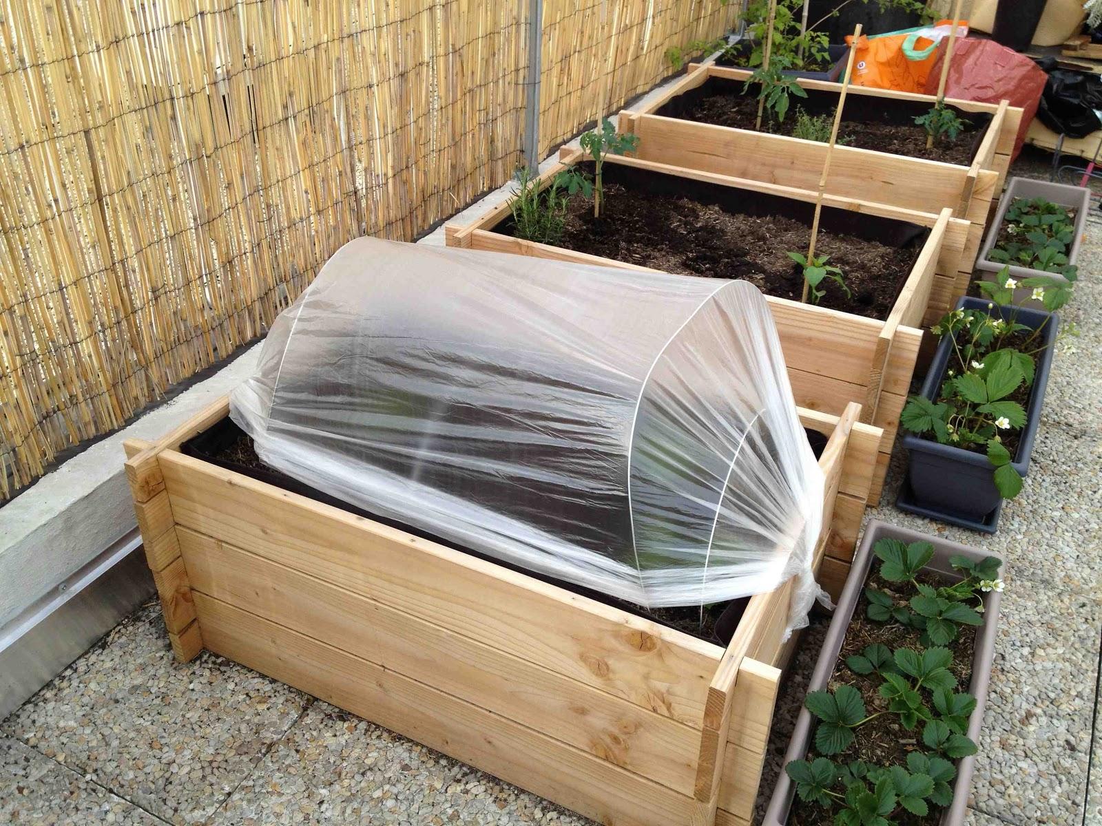la m tamorphose du balcon plantation de la ratatouille. Black Bedroom Furniture Sets. Home Design Ideas