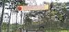 Perkebunan PT Rotorejo Kruwuk : Warga Masyarakat Agar Taat Hukum