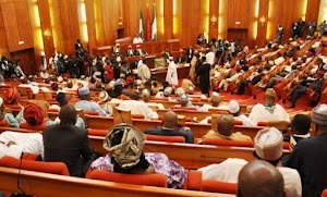 Senate Declined Attempts to punish people for ownership of Forex