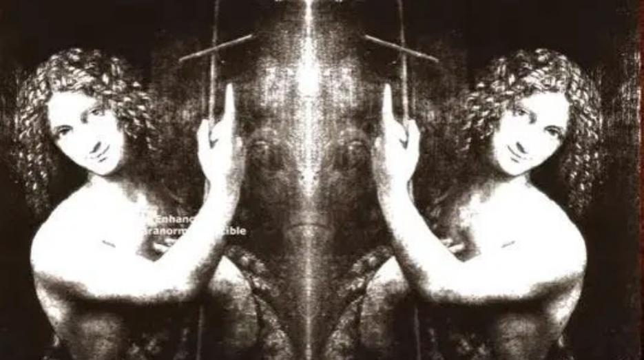 Alien Face in One of Paintings By Da Vinci