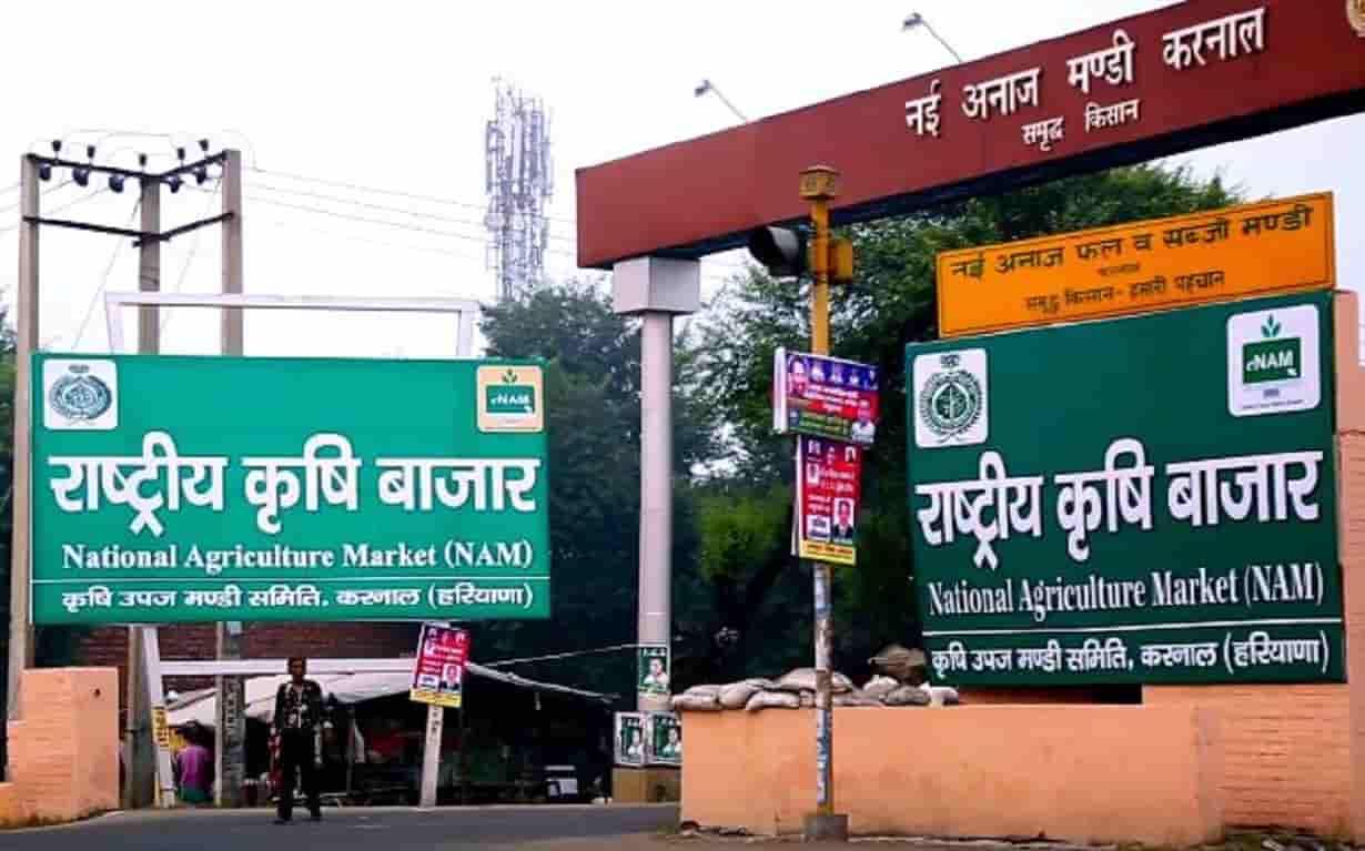 429 crore loan on Haryana Marketing Board