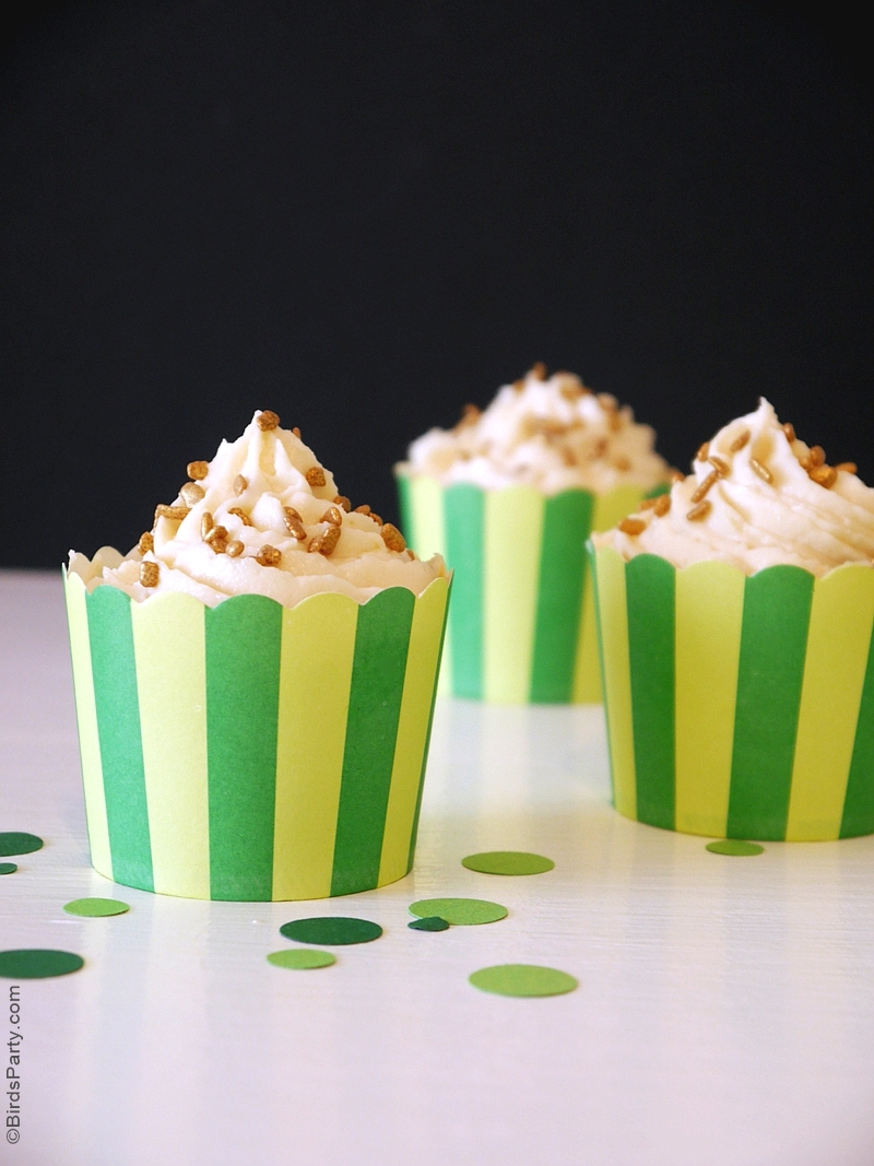 Stout Chocolate Cupcakes with Irish Cream Frosting Recipe - BirdsParty ...