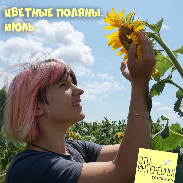Что цветет в июле в Крыму