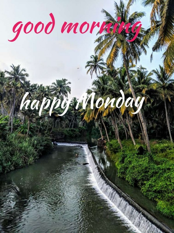 Monday Pictures