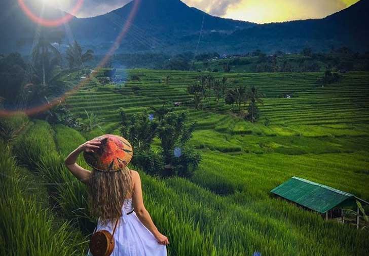 Desa Jatiluwih Surga di Pulau Dewata Bali
