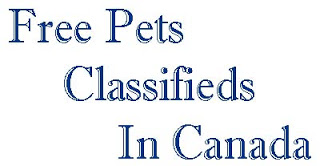 Free Pets Classifieds In Canada