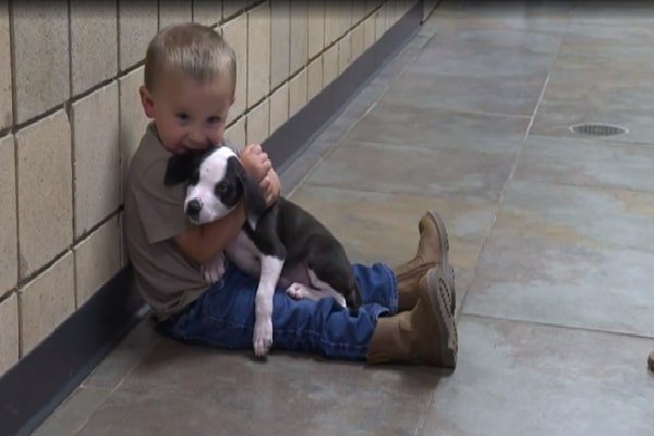 Kid Holds Pup With Exact Same Abnormality, Squeals Since 'They're Both So Adorable'