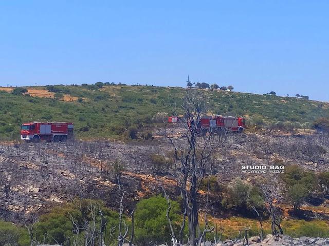 Καλύτερη η εικόνα από το πύρινο μέτωπο στο Κολιάκι Επιδαύρου - Σε επιφυλακή η πυροσβεστική για το Σάββατο