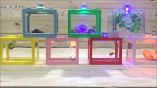 Lego Brick Shape Aquarium Tanks 9