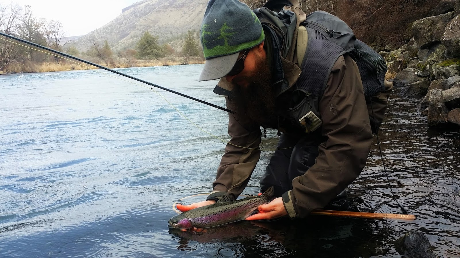 Gorge fly shop blog columbia gorge fishing report for Trouts fly fishing reports