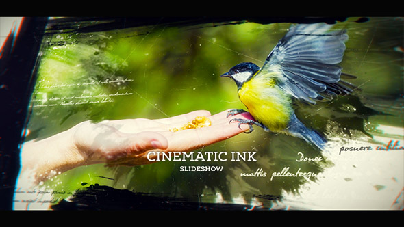 Preview%2BImage%2B%25281%2529 Cinematic Ink Slideshow Videohive – Free Download After Effects Templates download