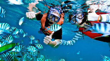 Snorkeling and Fishing