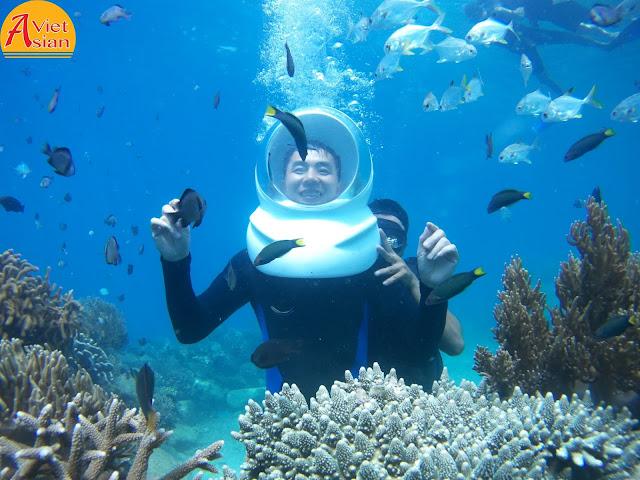 Tour Đi Bộ Dưới Biển 7