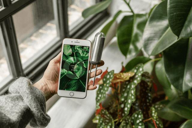 تعرف على هذا المستشعر الجديد الذي يمكنك من معرفة حاجيات النباتات