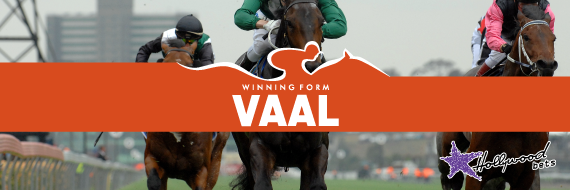Best Bets For Vaal Thursday