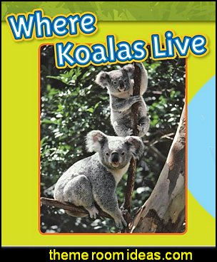 Koalas australian koalas where koalas live australian native animals koala decor