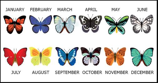 Узнайте, какие тайны скрывает бабочка Вашего месяца…