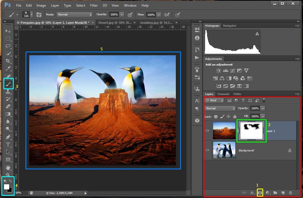 Yuk Belajar Edit Foto Pakai Photoshop