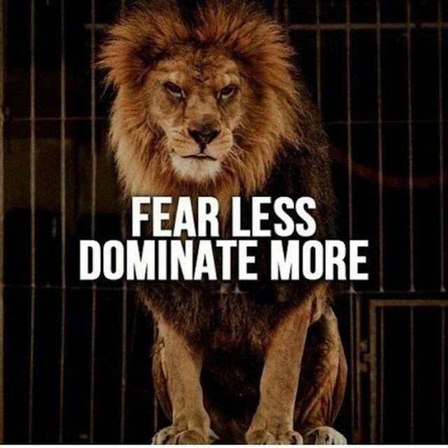 Fear Less Dominate More - Quotes Top 10 Updated