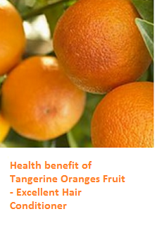 Tangerine Oranges (Fruit) -  Excellent Hair Conditioner