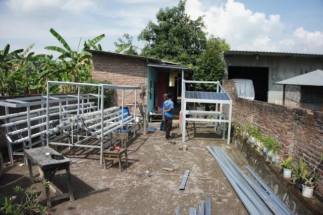 Bantu Petani Hidroponik, Ciptakan Teknologi Smart Farming