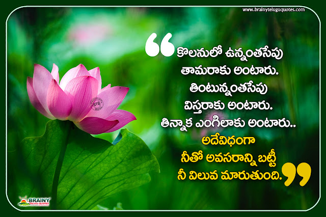 telugu quotes, life changing words in telugu, motivational quotes in telugu, nice life changing quotes