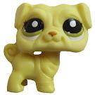 Littlest Pet Shop Blind Bags Pug (#2589) Pet