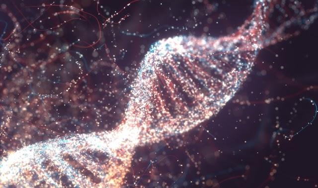 Αρχαίο DNA «μίλησε»: Οι σημερινοί Έλληνες όμοιοι γενετικά με πληθυσμούς Β. Αιγαίου του 2.000 π.Χ