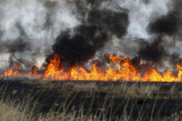 kebakaran di Ladang Keluarga Betz