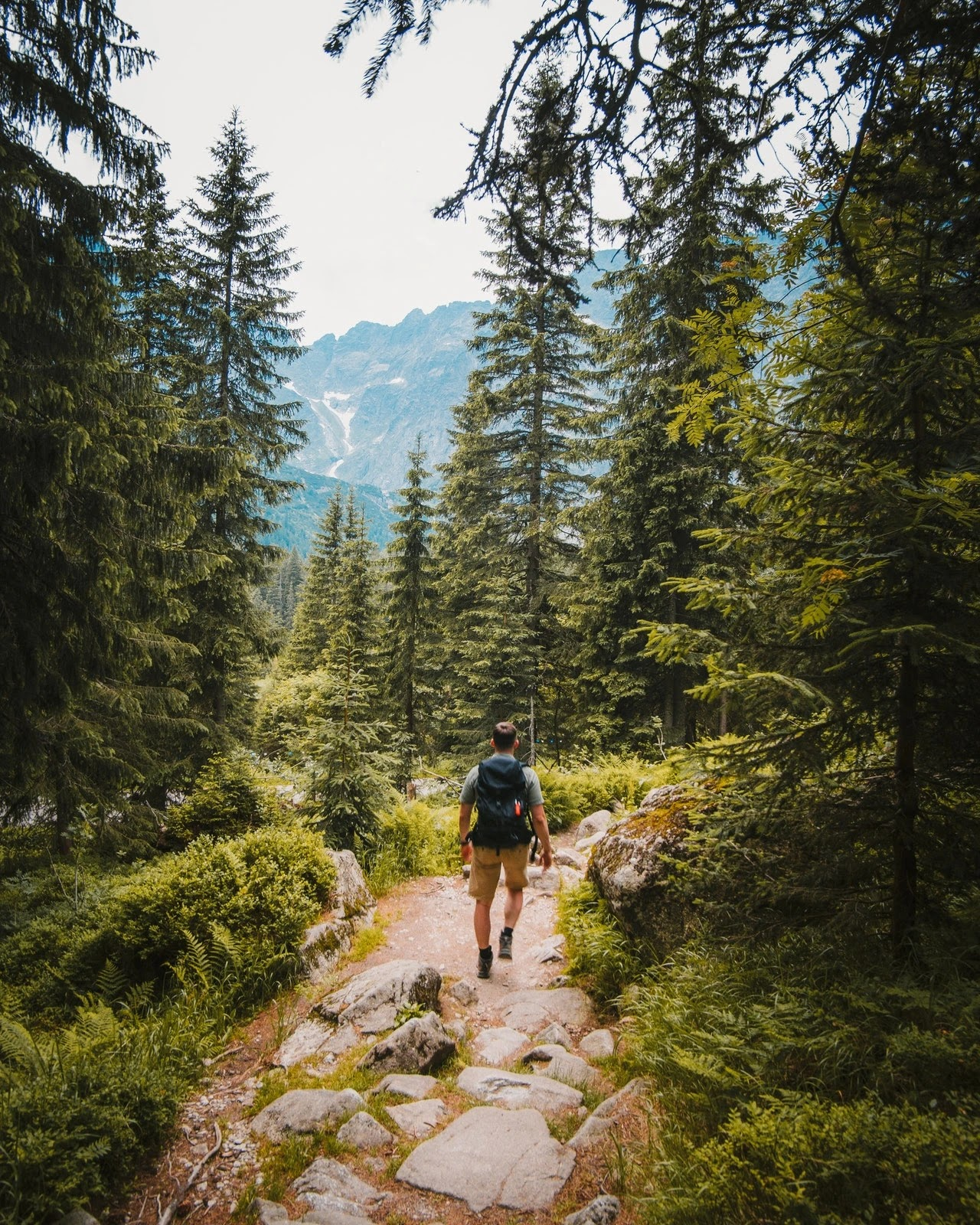 jalur pendakian gunung foto josh hild