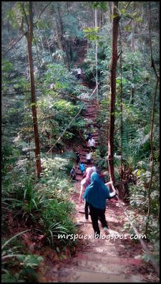 bukit gasing petaling jaya