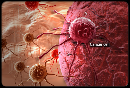 These Seven Foods Kill Cancer Cells; Time To Start Eating Them