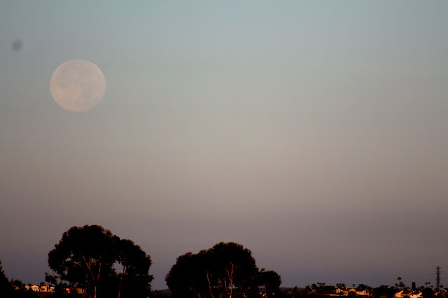 Moon setting at 2 degrees above horizon at 6:18 am PDT, 300mm, 1/1000 second (Source: Palmia Observatory)