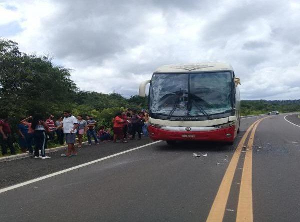Ônibus da empresa Líder colide em traseira de carreta na BR-230