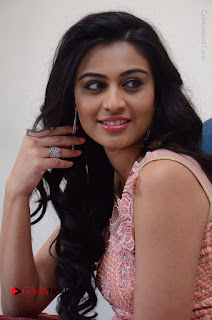 Actress Neha Hinge Stills in Pink Long Dress at Srivalli Teaser Launch  0113.JPG