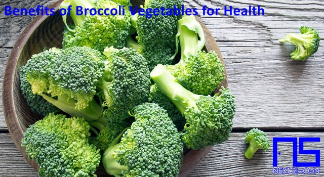 Broccoli Vegetables, What Is Broccoli Vegetables, Understanding Broccoli Vegetables, Explanation of Broccoli Vegetables, Benefits of Broccoli Vegetables for Health, Benefits of Broccoli Vegetables for the Body, Nutrition of Broccoli Vegetables, Vitamins for Broccoli Vegetables, Vitamins and Broccoli Vegetables Nutrition for Body Health, Get a Healthy Body with Broccoli Vegetables, Information about Broccoli Vegetables, Complete Info about Broccoli Vegetables, Information About Broccoli Vegetables, How the Nutrition of Vitamin Broccoli Vegetables is, What are the Benefits of Broccoli Vegetables for the Body, What are the Benefits of Broccoli Vegetables for Health, the Benefits of Broccoli Vegetables for Humans, the Nutrition Content of Broccoli Vegetables provides many benefits for body health.