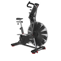 Schwinn AD Pro Airdyne Bike, commercial-grade air fan bike, review features & specifications