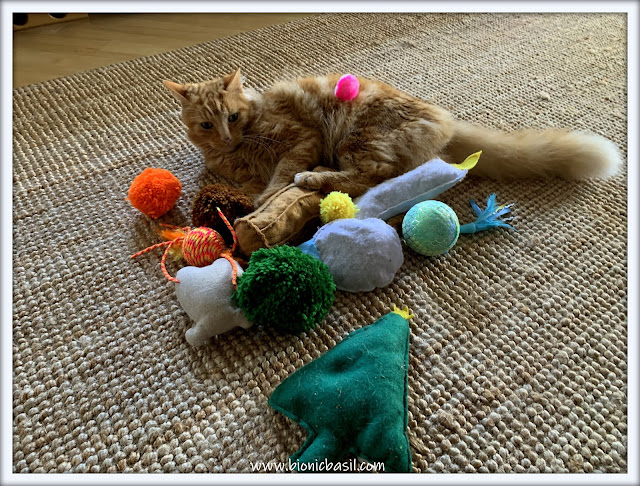 Fudge's Got All The Toys  ©BionicBasil® The Pet Parade 368