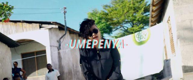 Pam D Ft Msaga Sumu - Umepenya Video