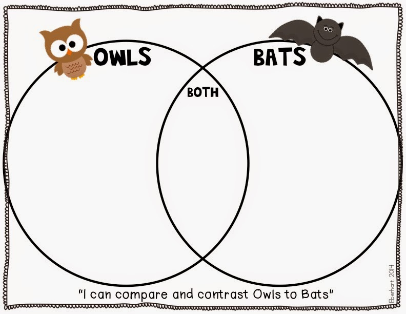 all owls diagrams wiring diagram online Great Gray Owl bat venn diagram elita mydearest co owl diorama all owls diagrams