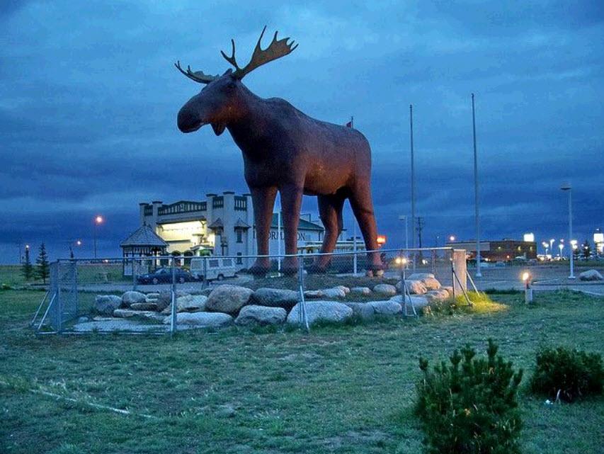 art wonder every day: Biggest-ever elk statue arrives in Norway