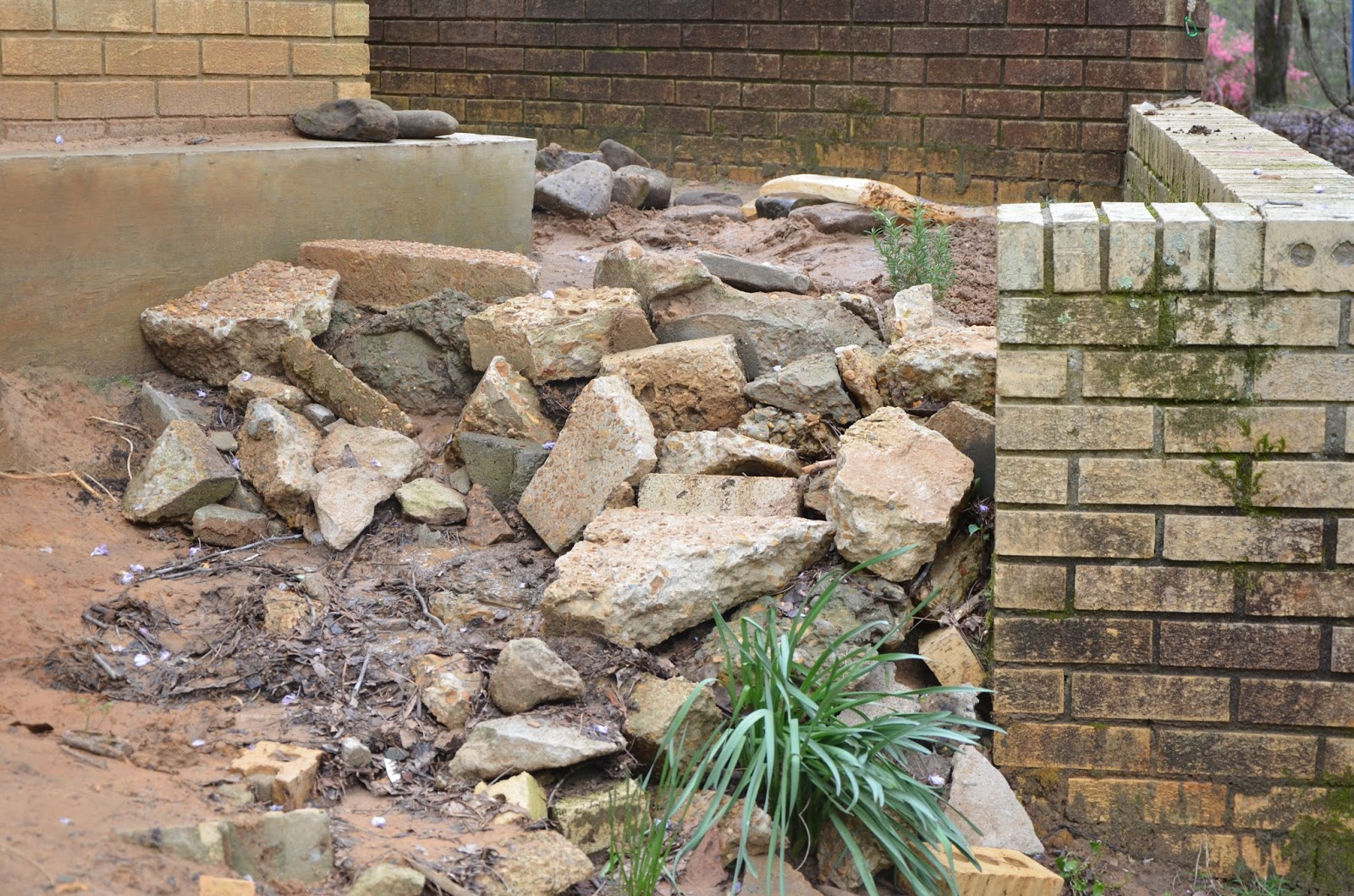 Handmade And Homegrown Landscaping Drainage Erosion Fix