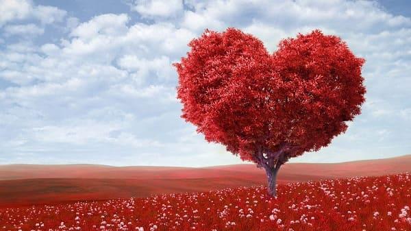 أجمل عبارات وأقوال الفلاسفة والمشاهير في الحب